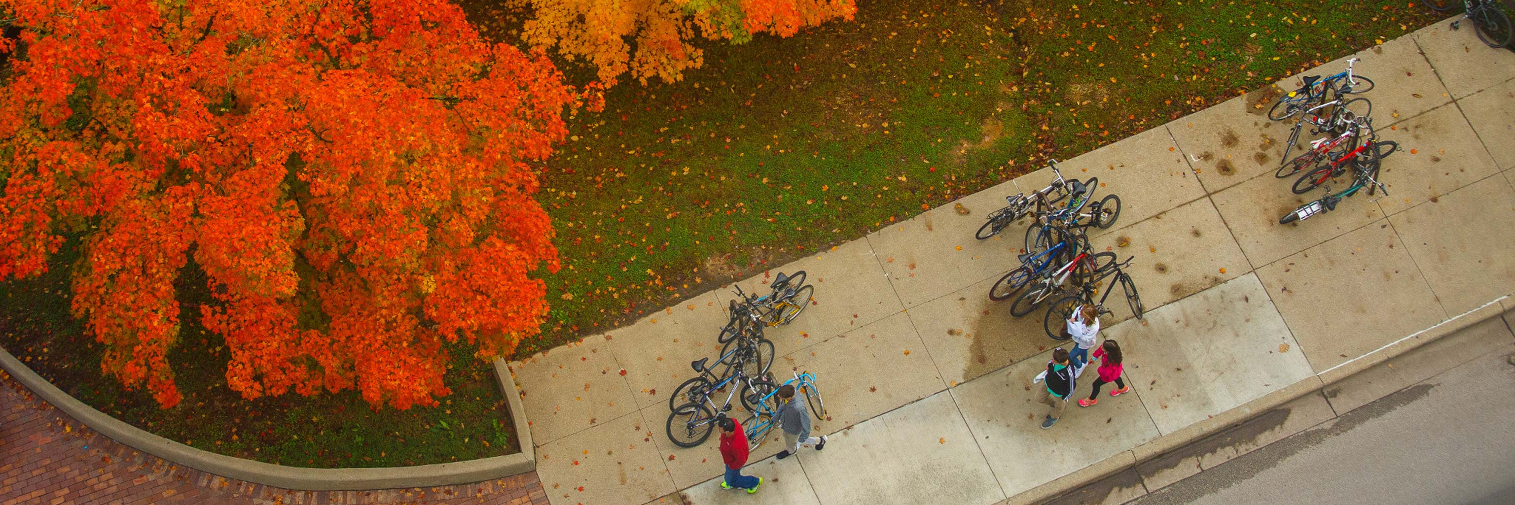 Autumn aerial view of campus